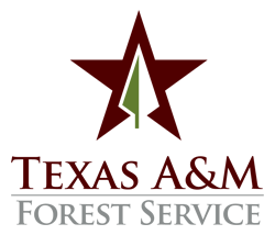 Texas A&M Forest Service Emblem